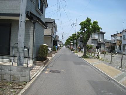 2009052601.jpg
