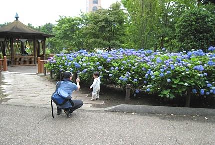 2009053106.jpg