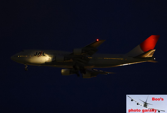 jal116707416