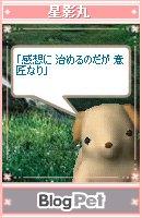 kyu-575-006