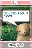kyu-575-009