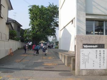 20060602115304.jpg