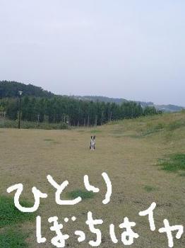 20061106161612.jpg