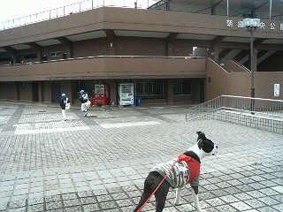 20090405_野球場.jpg