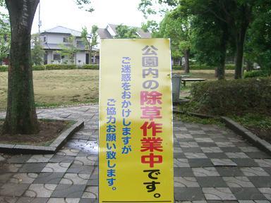 20090611CIMG2704.jpg