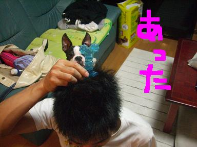 20090714CIMG3110.jpg