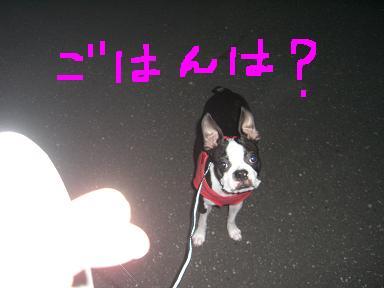 20090715CIMG3169.jpg