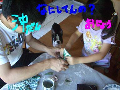 20090727CIMG3380.jpg