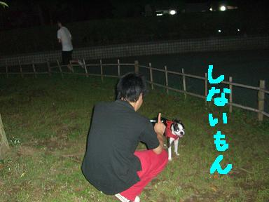 20090729CIMG3260.jpg
