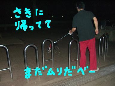 20090729CIMG3263.jpg