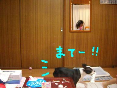 20090730CIMG3428.jpg
