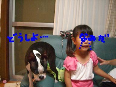 20090730CIMG3433.jpg