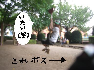 20090807CIMG3629.jpg