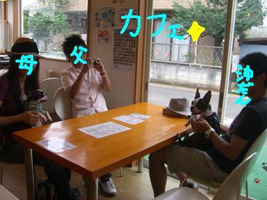 20090809CIMG3750.jpg