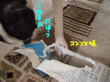 20090819CIMG3589.jpg
