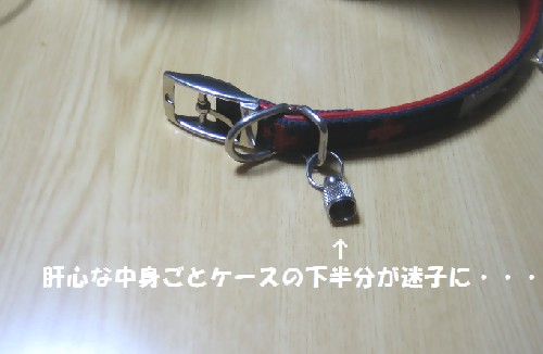 IMG_3000r