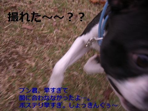 CIMG0277r