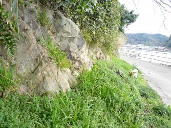 ティルタの好きな崖