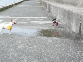 足が濡れちゃうわ><。