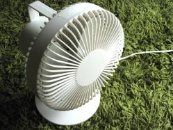 fan01.jpg