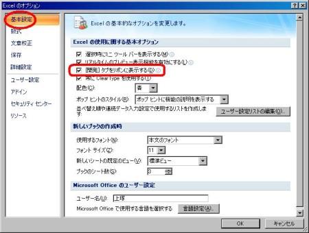 excel2007-form2.JPG