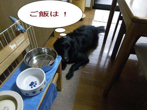 1_20120207205845.jpg