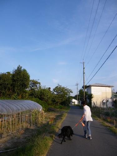 5_20110929103219.jpg