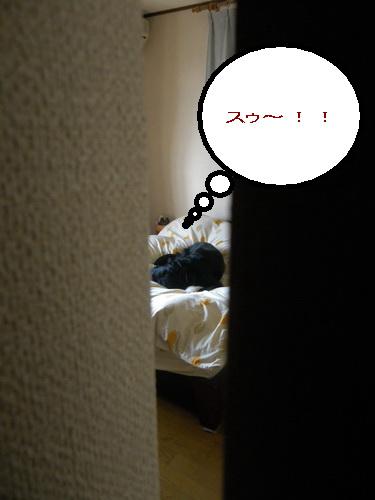6_20111027185319.jpg