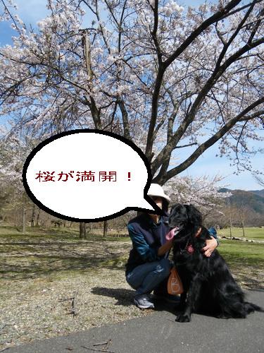IMGP6329.jpg