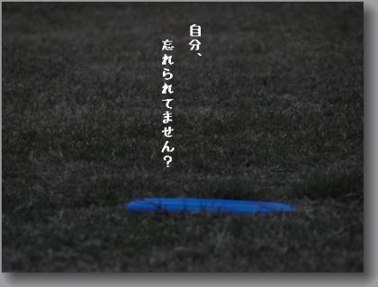 DSC01814.jpg