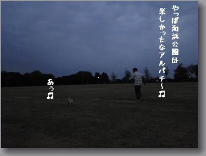 DSC01836.jpg