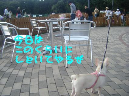 aru+072_convert_20090913140917.jpg