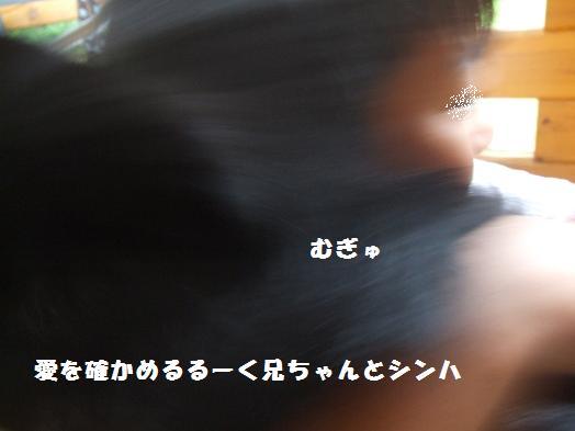 丸 033