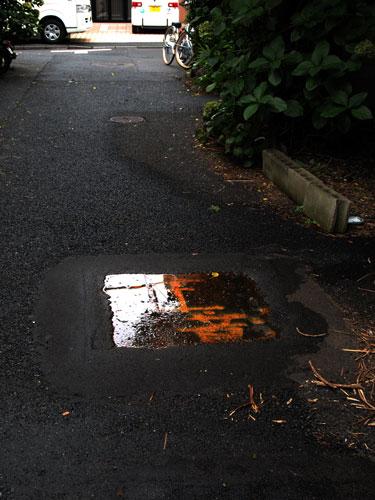 雨上がりの路上に