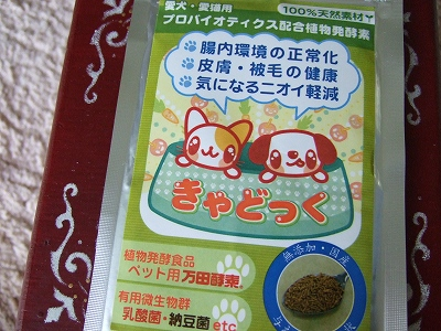 2008_09100016.jpg