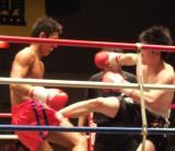 キックボクシング試合8
