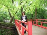 三千院の橋