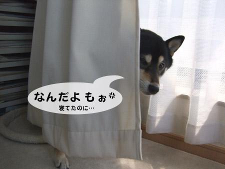 ぶん太の個室(2009/3/15)