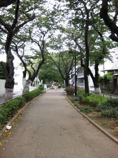 blog_nomigawaryokudo270908.jpg