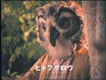 こんばんわ、ヒトフクロウです