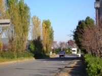 2008111301