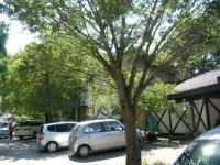 道の駅040
