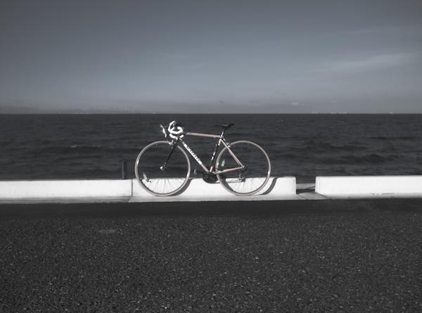 Coast Cafe-1080969
