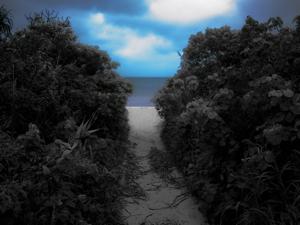 湾岸写真集モノカラーフル-1040871