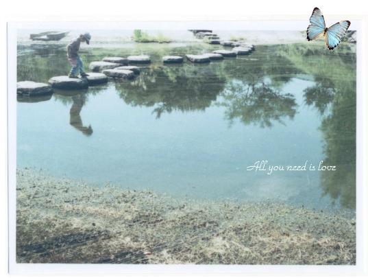 06 池を渡る