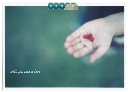 06 赤い木の実