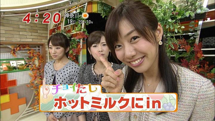 yamap20101112_01.jpg