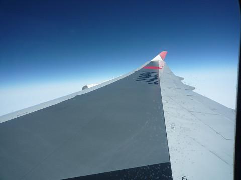 JALの翼