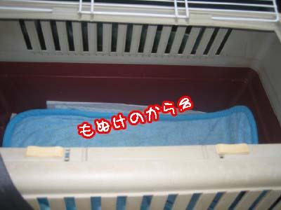 0-1_20080922233254.jpg