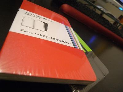 RICOH_20110131_1000.jpg